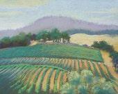 Vineyard - Original Pastel   FREE SHIPPING