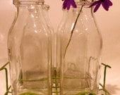 Vintage Milk Bottles with Wire Stand