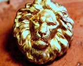 Lion King of the Jungle large lion head (2 pc)