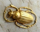 Medium Rounded Scarab Beetle (2 pc)