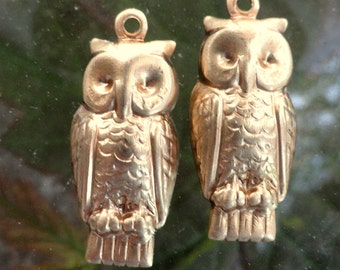 Wise Old Owls (6 pc)