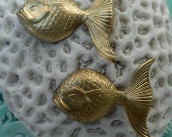 Cute Goldie Goldfish  (4 pc)