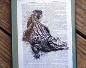 Alligator Print New Orleans Louisiana Cajun Art