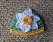 Daffodil Beenie