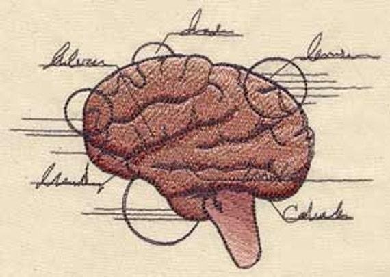 Anatomical Brain Embroidered Flour Sack Hand/Dish Towel