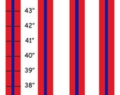 Personalized Red & Navy Blue Striped Canvas Growth Chart - Ribbon
