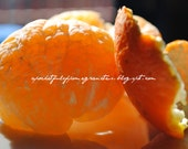 digital photograph of an orange and orange peel, perfect for the kitchen or dining room - 8x10