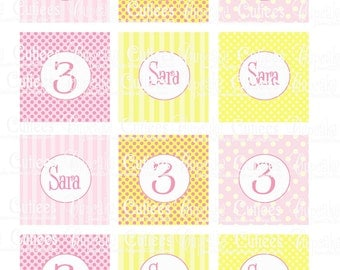 Pink Lemonade 2 CUSTOM  Digital   2 Inch Circle Tags N Cupcake Toppers  Personalized PRINTABLE