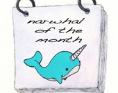 Narwhal of the Month Club - 3 month subscription - size BIG