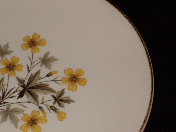 Desert Plates with Yellow Flowers
