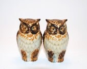 Pair of Owl Figurines