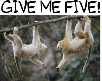 Two Monkeys Swinging On A Tree Shout Give Me Five Partner greting card