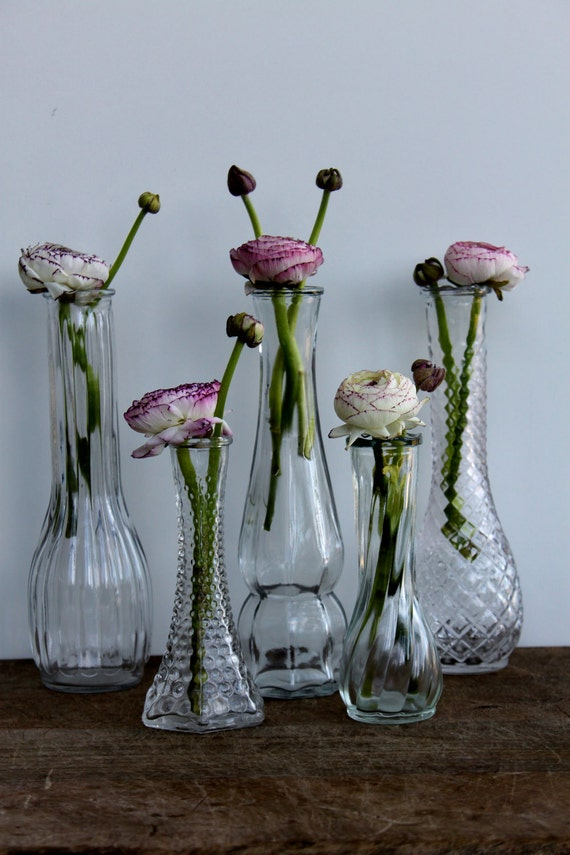 Set of 5 clear glass vases