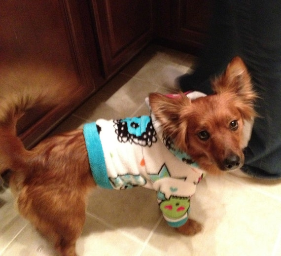 Teal, Pink, Green and White Skull Girly Cuddle Fleece Dog Hoodie Trimmed in Teal