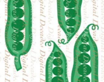 Little Green English Pea Pods Primavera Fresh Vegetables Garden - Digital Image - Vintage Art Illustration - Instant Download