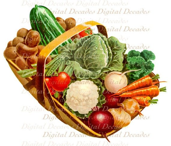 Vegetable Basket Garden Food Digital Image Vintage Art