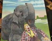 Vintage Postcard Ringling Bros. and Barnum & Bailey Elephant Clown
