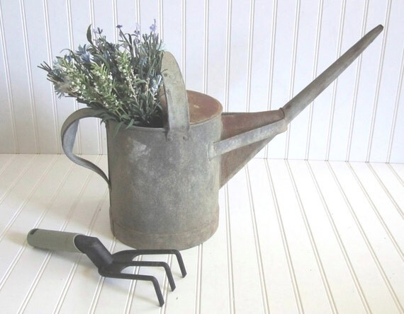 Vintage Watering Can - Rustic English Country Garden