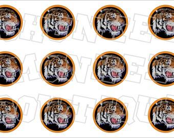 Tiger head with orange background bottlecap image sheet - school mascot