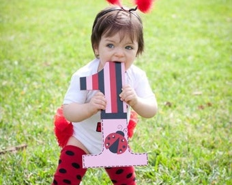 Ladybug photo prop - first birthday - custom - hand painted - wooden number one - 1