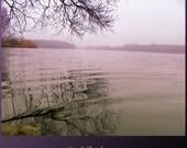 "Silence of Nature - Print of Original Foto - 8"" x 11"""