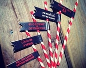 Set of 24 Bachelorette Party Paper Straws - Choose Your Design and Colors