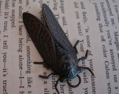 Rare Decadent Dark CICADA Bug Penadant, Large, NOT RAW