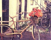 """Bicycle, Bicycle - Rustic Autumn Decor, Bicycle with Orange Tulips in Amsterdam, The Netherlands, Fine Art Photography 8x10"""" Matte Print"""