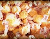 "Photo Print SALE Salt Water Taffy Fine Art 8x10"" Photography Matte Print, Candy Shop Photograph in Sherbet Orange"