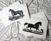 Equine Class Stationery Set - 5x7 Cards and Envelopes - Set of 6