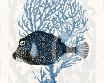 Blue Coral Fish Collage Art Print - 5 x 7