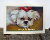Sympathy, Sorry, or Blank Note Card - Fluffy White Shih Tzu - Pet Lover