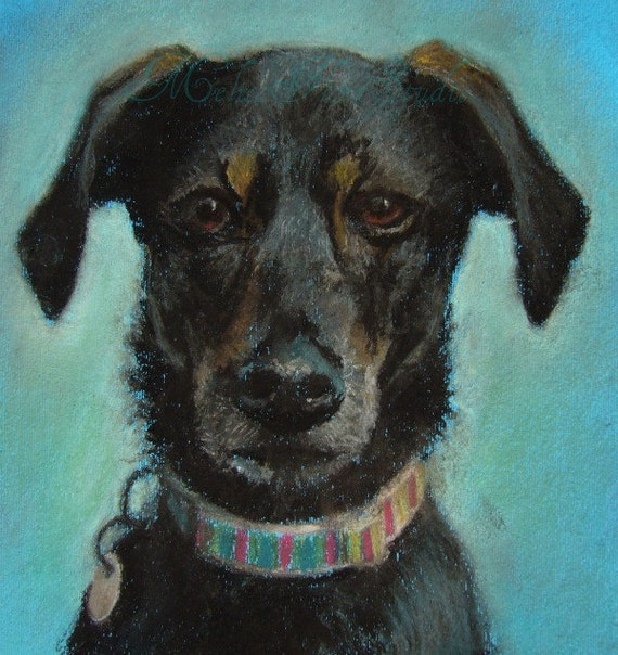 """Custom Pet Portrait - Pastel Drawing 9"""" x 12"""" - Unique Gift for Pet  Lovers"""
