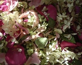 Pretty Pink Petal Mix Perfectly Preserved Dried Peonies Roses  with Hydrangea Wedding Decor Toss