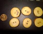 Ash wooden buttons