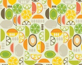 Fruit Slices from Kitchy Kitchen by Maude Asbury, coral, 100% cotton, 1/2 yard