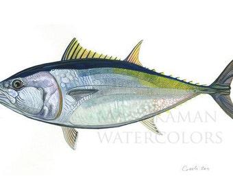 Bluefin Tuna Watercolor (print) by Damon Crook (11 x 14)