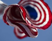 5x7 American Flag Photographic Print,  flown during the memorial for two fallen airmen killed in March 2011