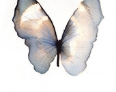 SPRING SALE pale blue grey and white butterfly