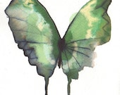 grass green and yellow flecked butterfly