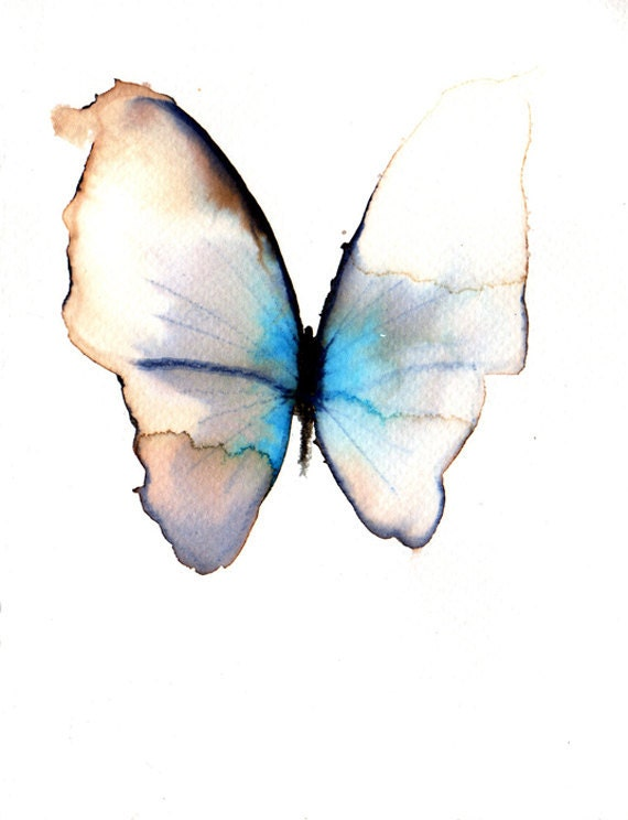 pale blue and grey butterfly with white marks
