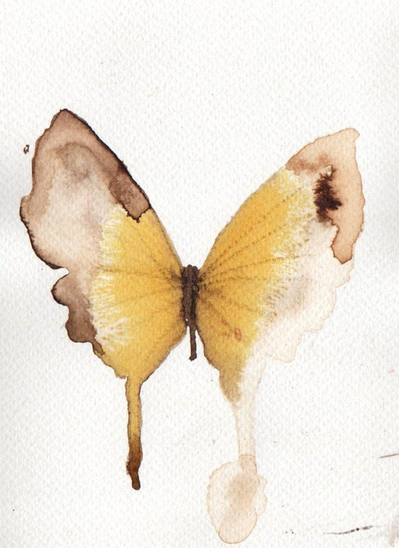 yellow and pale brown butterfly