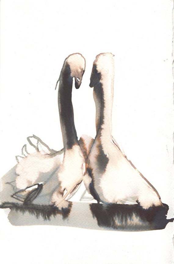 kissing swans: original drawing