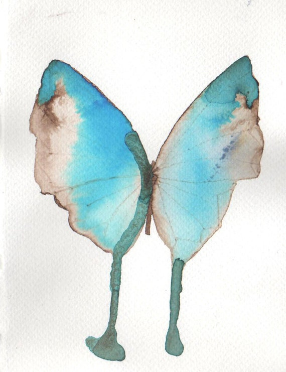 azure blue and pale brown butterfly with turquoise marking
