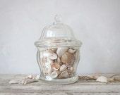 Vintage Glass Candy Jar & Seashells