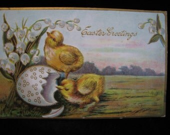 Early 1900 Easter Hatching Chicks  Postcard