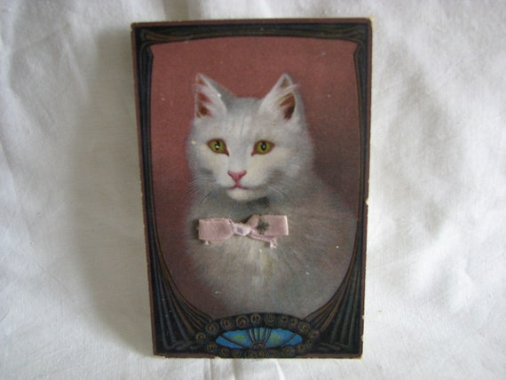 German Postcard 1908 Cat With Real Bow