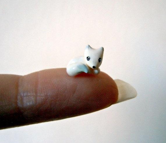 Tiny arctic fox