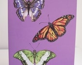 Three butterflies, purple background, Illustration greeting card