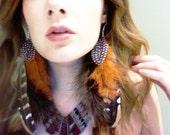Foxtail Long Feather Earrings